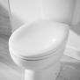 Wickes Thermoset Stainless Steel Hinge Toilet Seat – White £17 @ Wickes