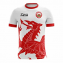 2018-2019 Wales Away Concept Football Shirt (Kids) £29.99 @ UKScoccershop